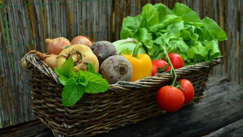 Idées fausses sur les aliments biologiques