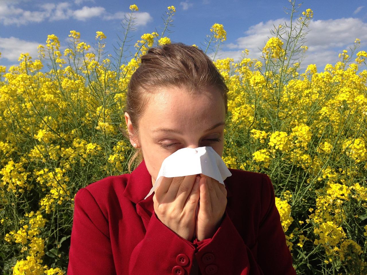 Les antihistaminiques naturels pour les allergies