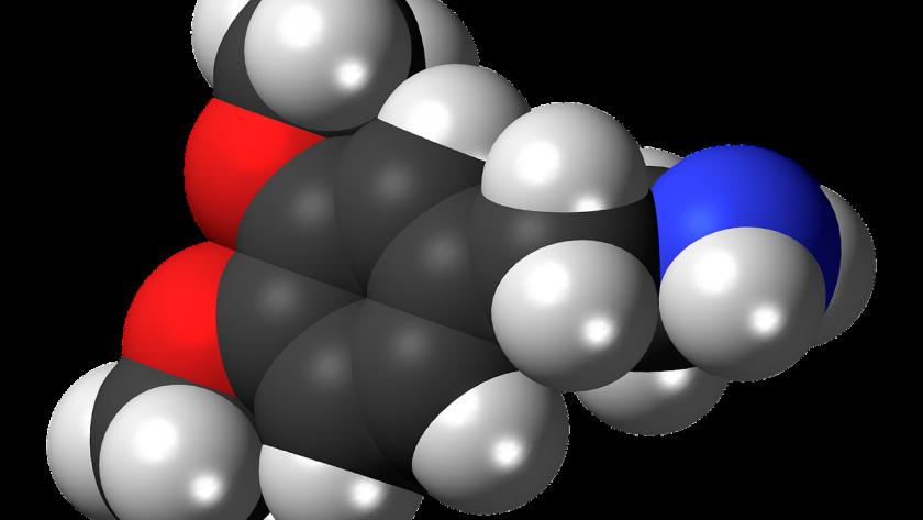 La dopamine vous aide-t-elle à perdre du poids ?